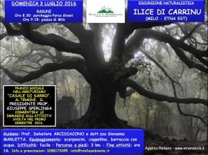 LOCANDINA ILICE CARRINU 3LUGLIO2016