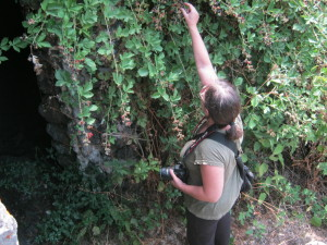 monte intraleo 2012 (7)