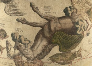 PEGASO disegnato da Gerardo Mercatore olandese Gerhard Kremer latinizzato Gerardus Mercator (1512 –1594) matematico, astronomo e cartografo.