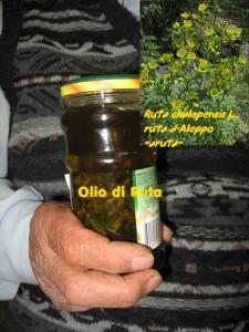 olio di di ruta