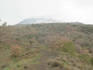 escursione-monte-arso-boscoscuro-5marzo2017-51