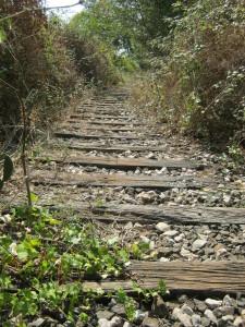 escursione-timpa-falconiera-2-ottobre2011-438-81