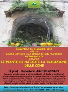 locandina-piante-natale-e-cone-san-francesco-immacolata-16dicembre2018