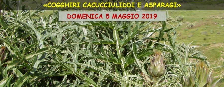 locandina-sieli-5maggio2019