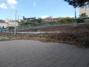 siepe-parcheggio-parco-gioeni-largo-mario-merola-14aprile2019-7