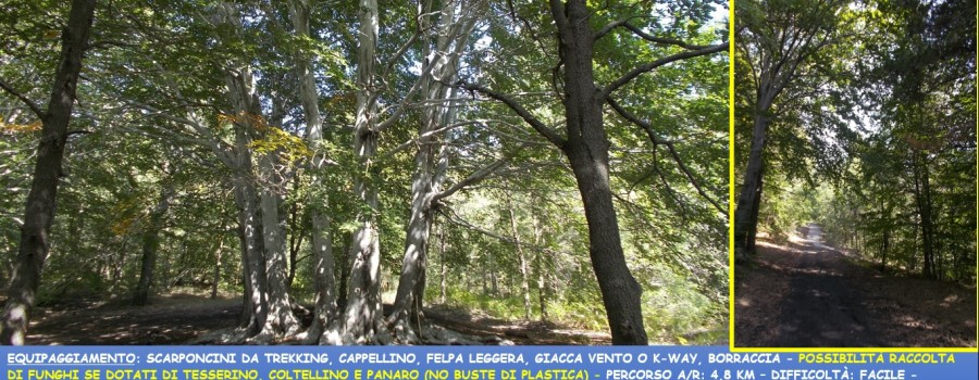 locandina-trofa-du-camperi-22settembre2019