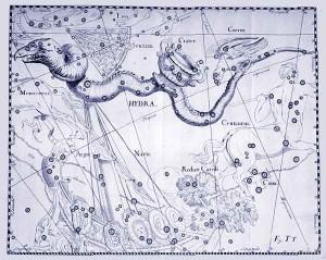 idra-di-lerna-secondo-johannes-hevelius-in-uranographia-1690