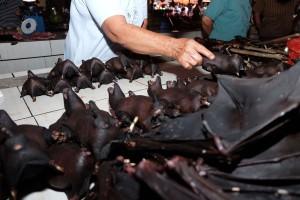 wet-market-vendita-pipistrelli