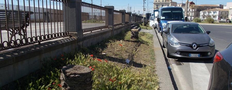 passiatore-via-vi-aprile-fontana-proserpina-30aprile2019-27
