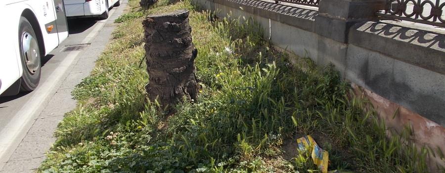 passiatore-via-vi-aprile-fontana-proserpina-30aprile2019-33