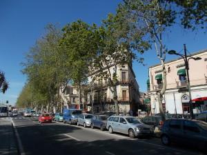 platani-via-vi-aprile-30aprile2019-1