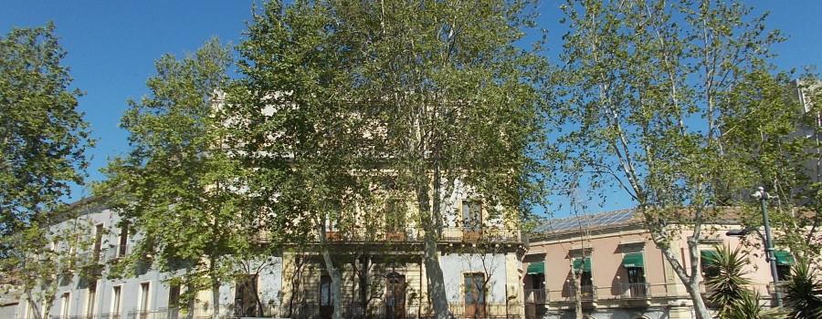 platani-via-vi-aprile-30aprile2019-2