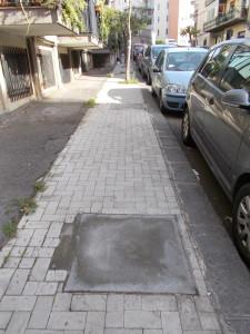 ligustri-capitozzati-via-brancati-fasano-30ottobre2020-3