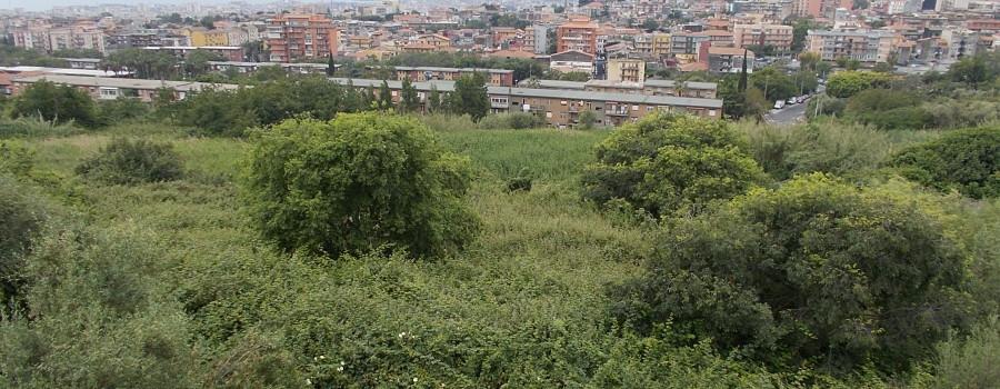 ambiente-umido-e-panorama-catania-25maggio-2019