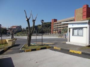 capitozzature-ospedale-cannizzaro-28febbraio2021-5