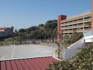 capitozzature-ospedale-cannizzaro-28febbraio2021-7