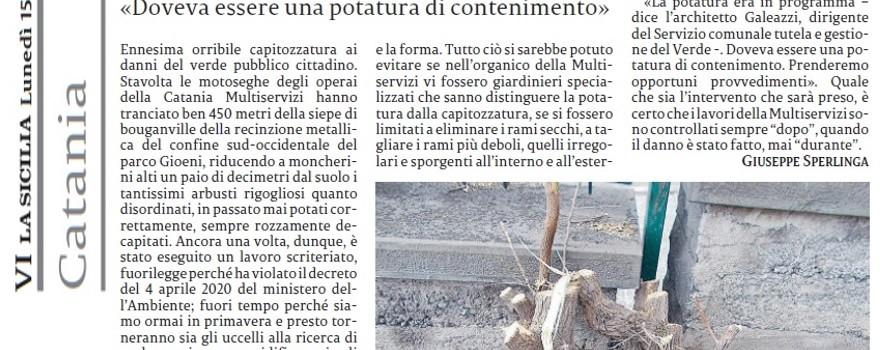 capitozzature-siepi-parco-gioeni-la-sicilia-15marzo2021-1