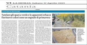 piante-selvatiche-in-citta-2-la-sicilia-17aprile2021